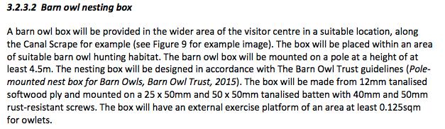 Barn Owl.png