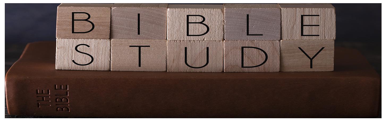 Bible Study web banner.png