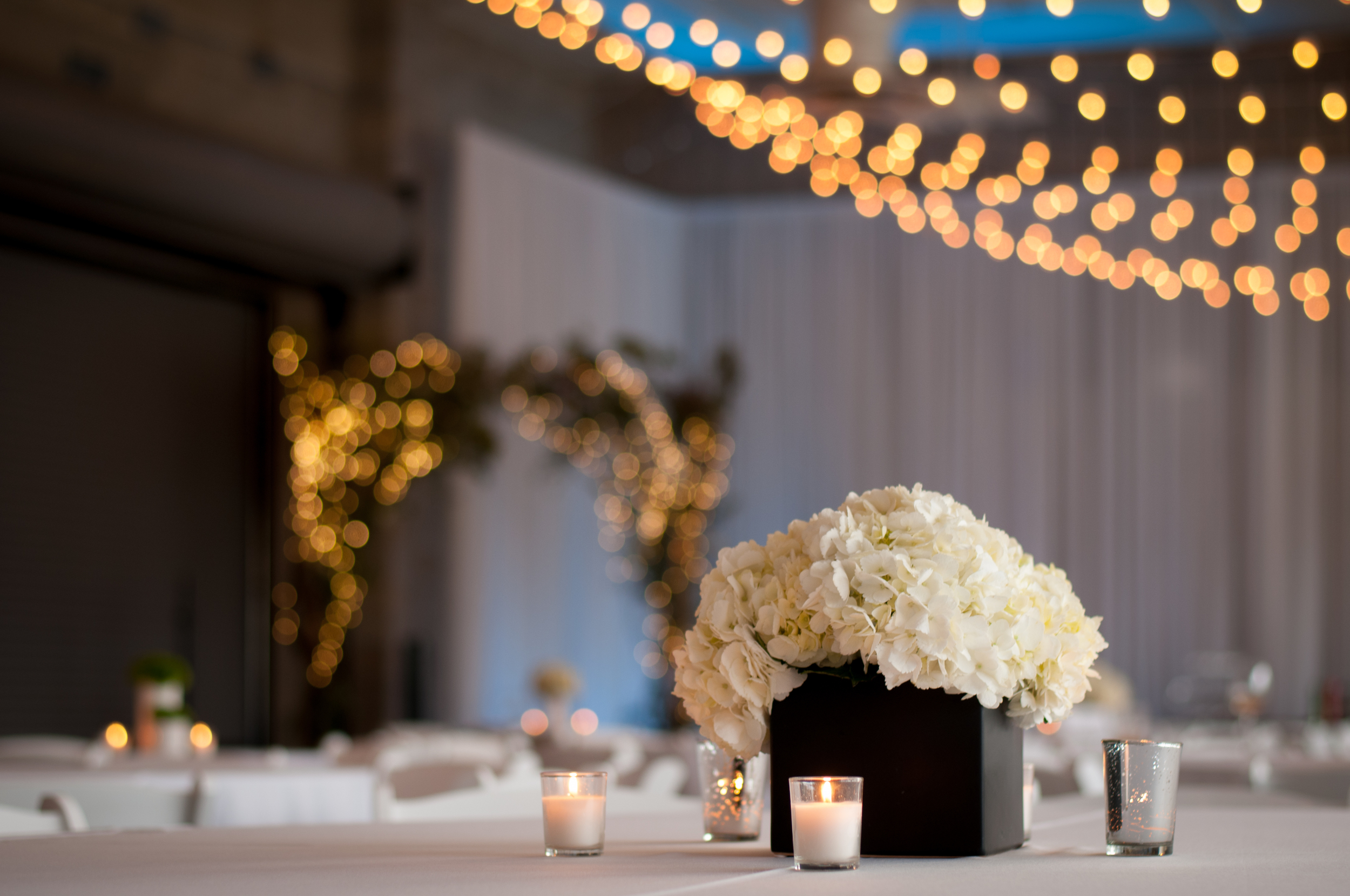 meredith donnelly photography-109.jpg