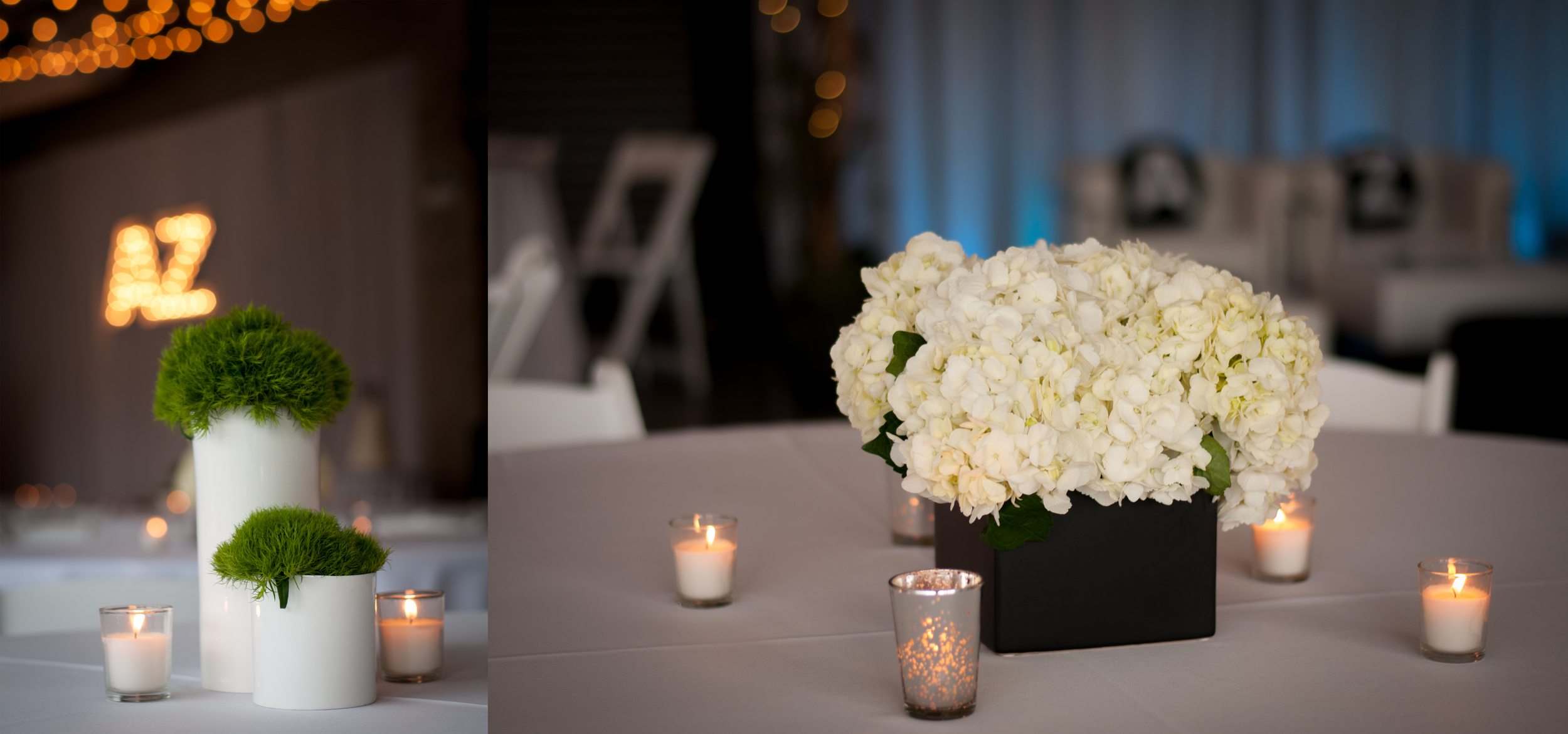 meredith donnelly photography-105.jpg