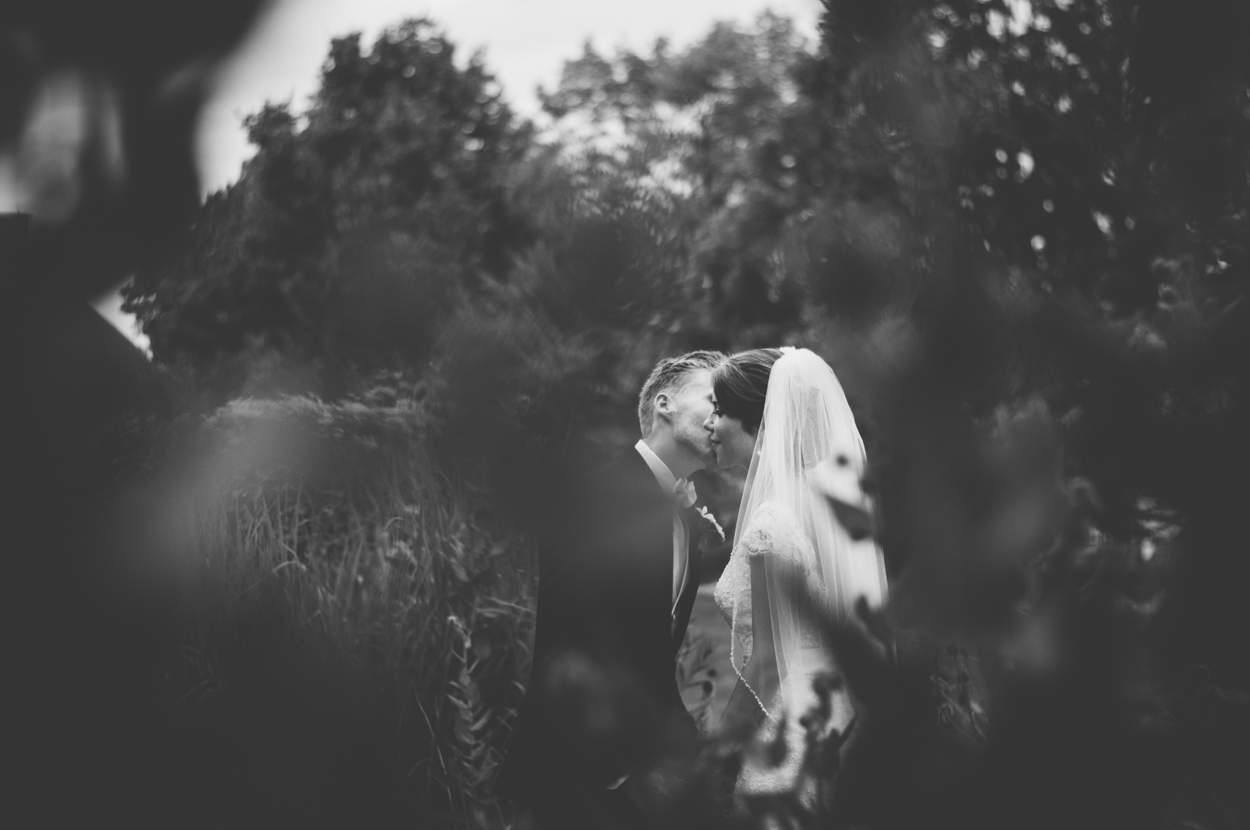 meredithdonnellyphotography-24.jpg
