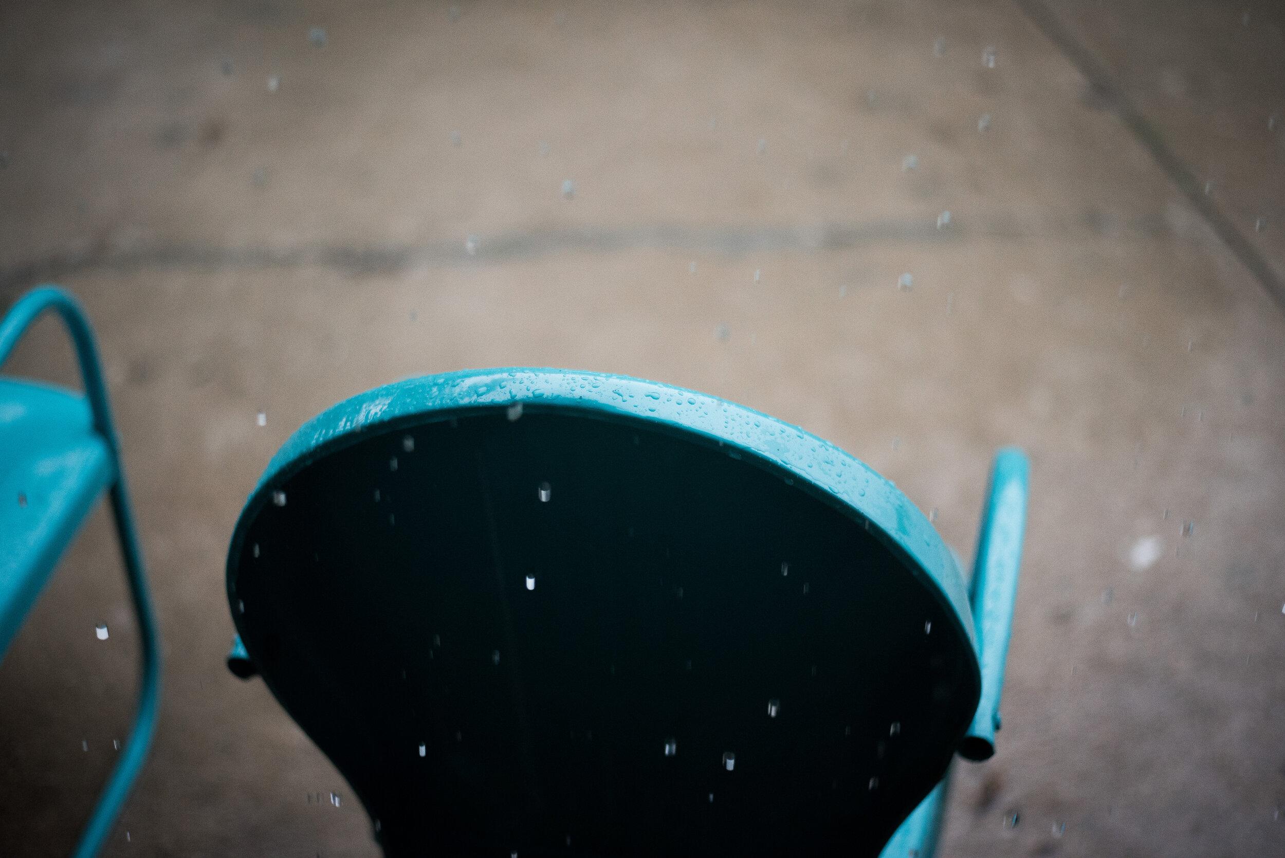 meredithdonnellyphotography-3.JPG