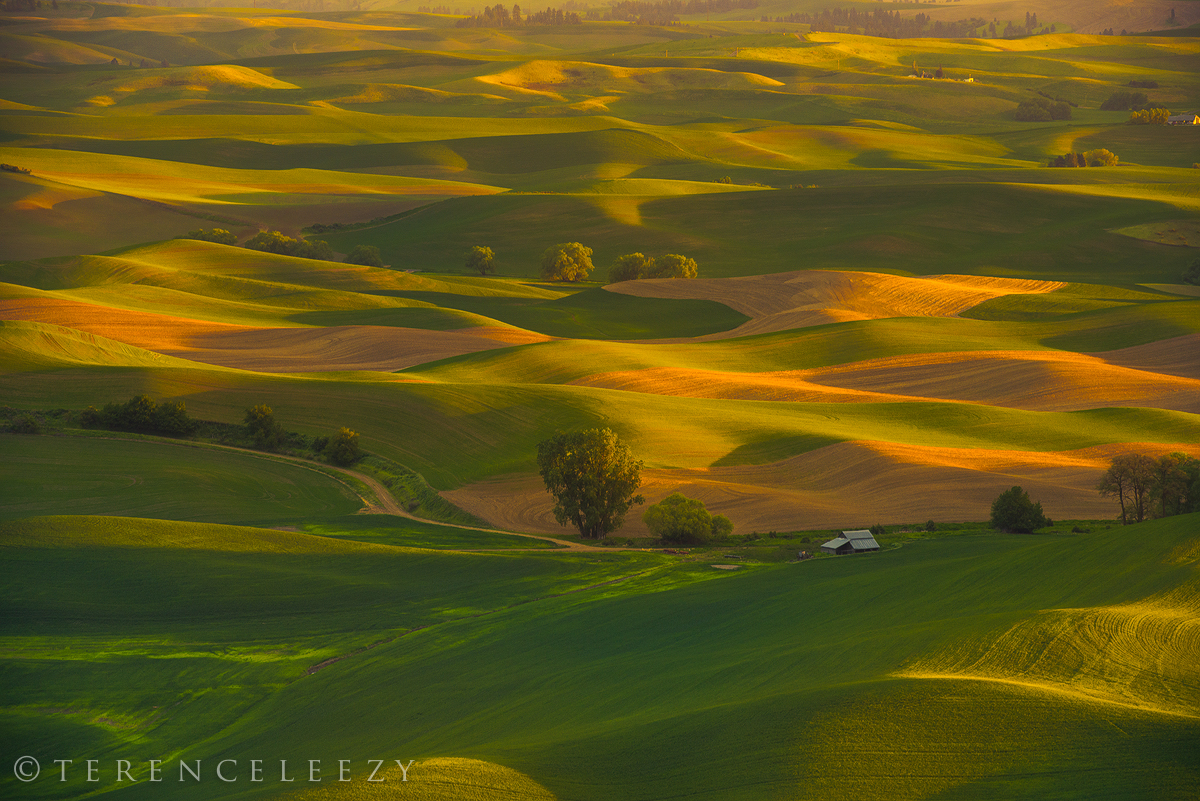 April - Steptoe Butte, Palouse, Washington