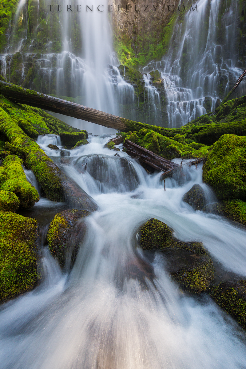 June - Proxy Falls, Oregon