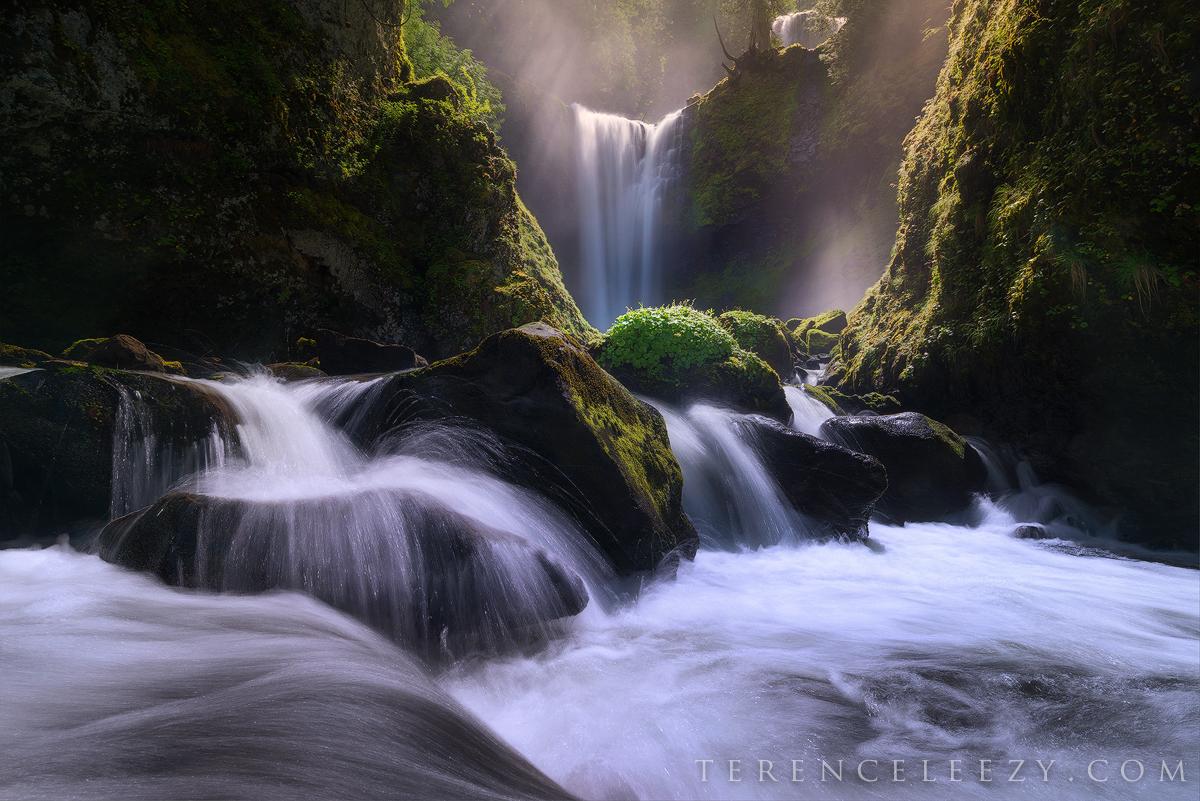 May - Falls Creek Falls, Oregon