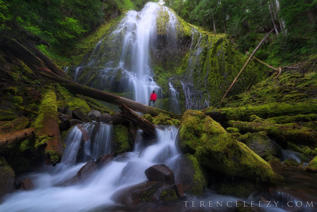 June - Proxy Falls, Oregon