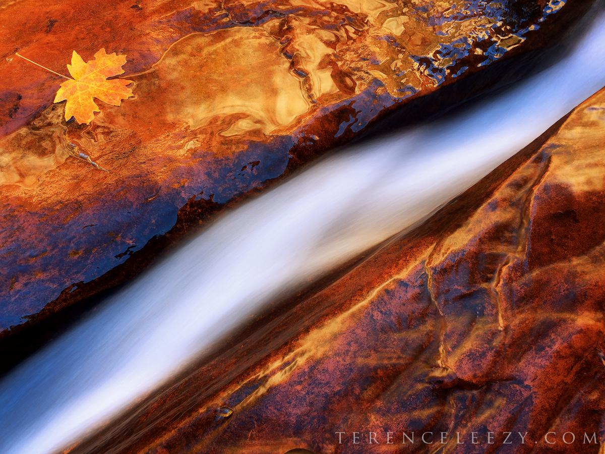 November - #ShotoniPhone6 Crack, Zion National Park, Utah