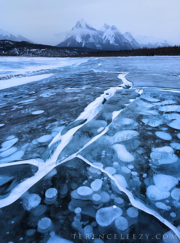 January - #ShotoniPhone6,Abraham Lake, Canada