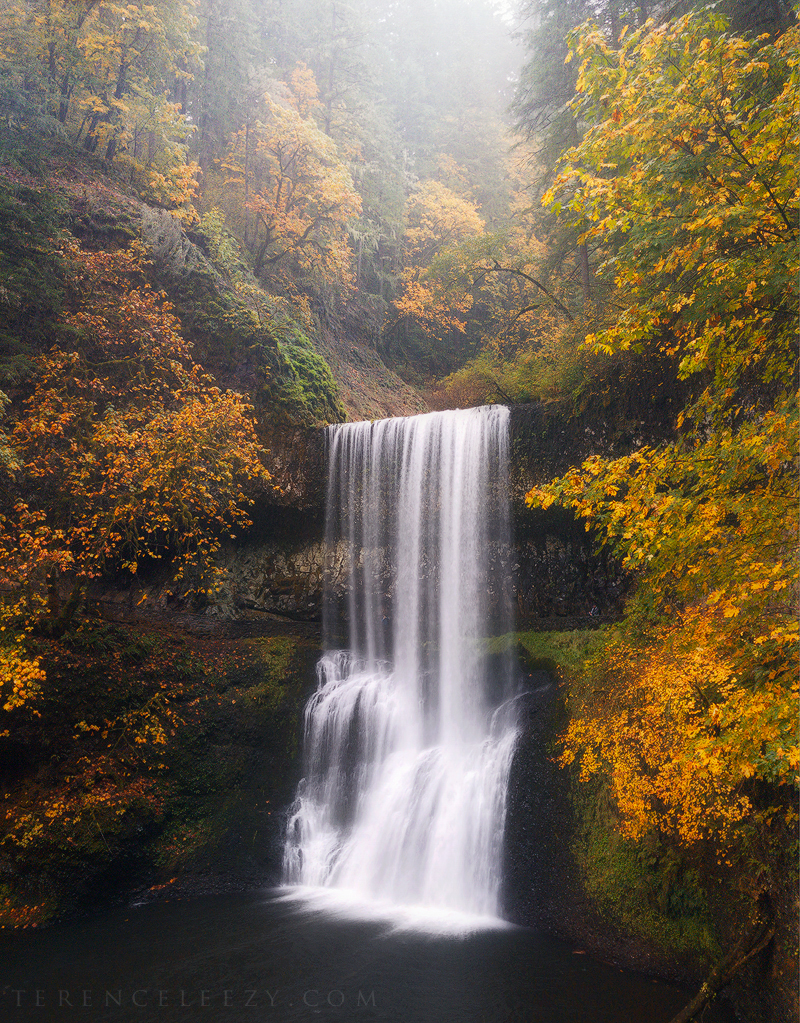 iPhone7 Plus - Silver Falls, Oregon