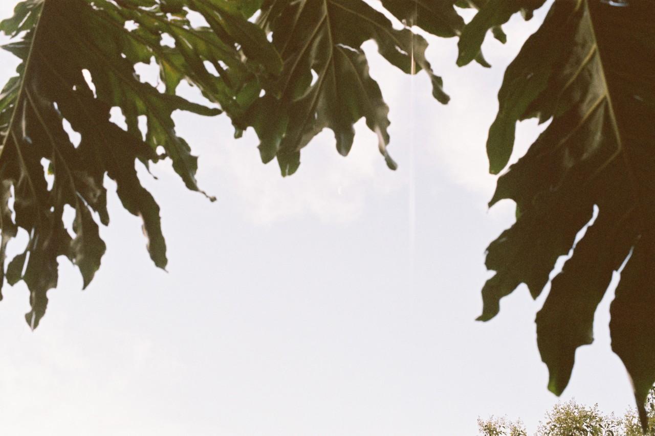 tumblr_o10kql6B0N1s9xr0oo1_1280.jpg