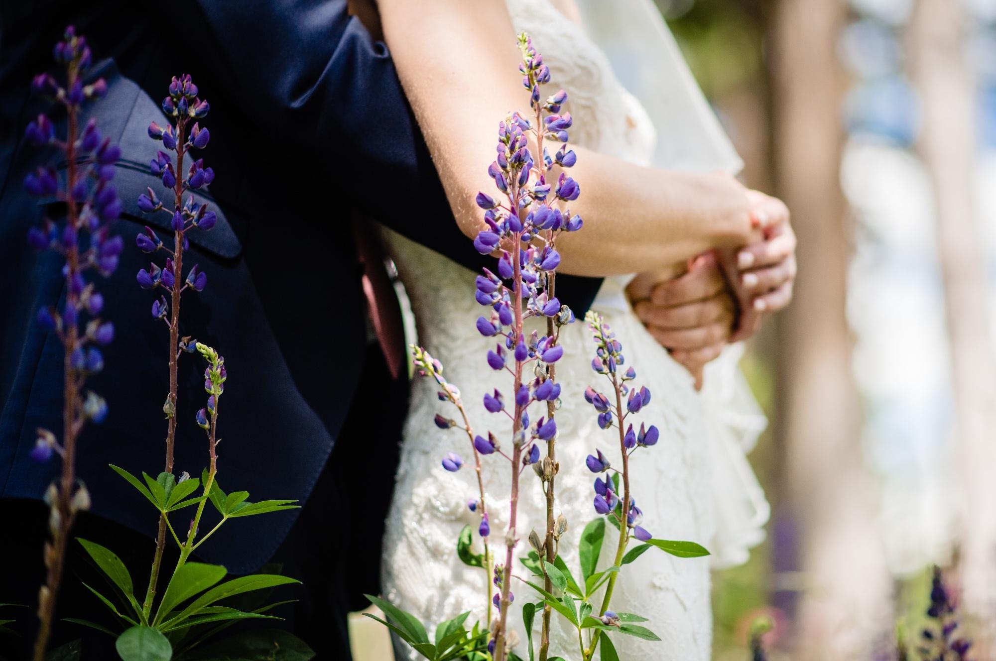 lindseyjanephoto_wedding0037.jpg