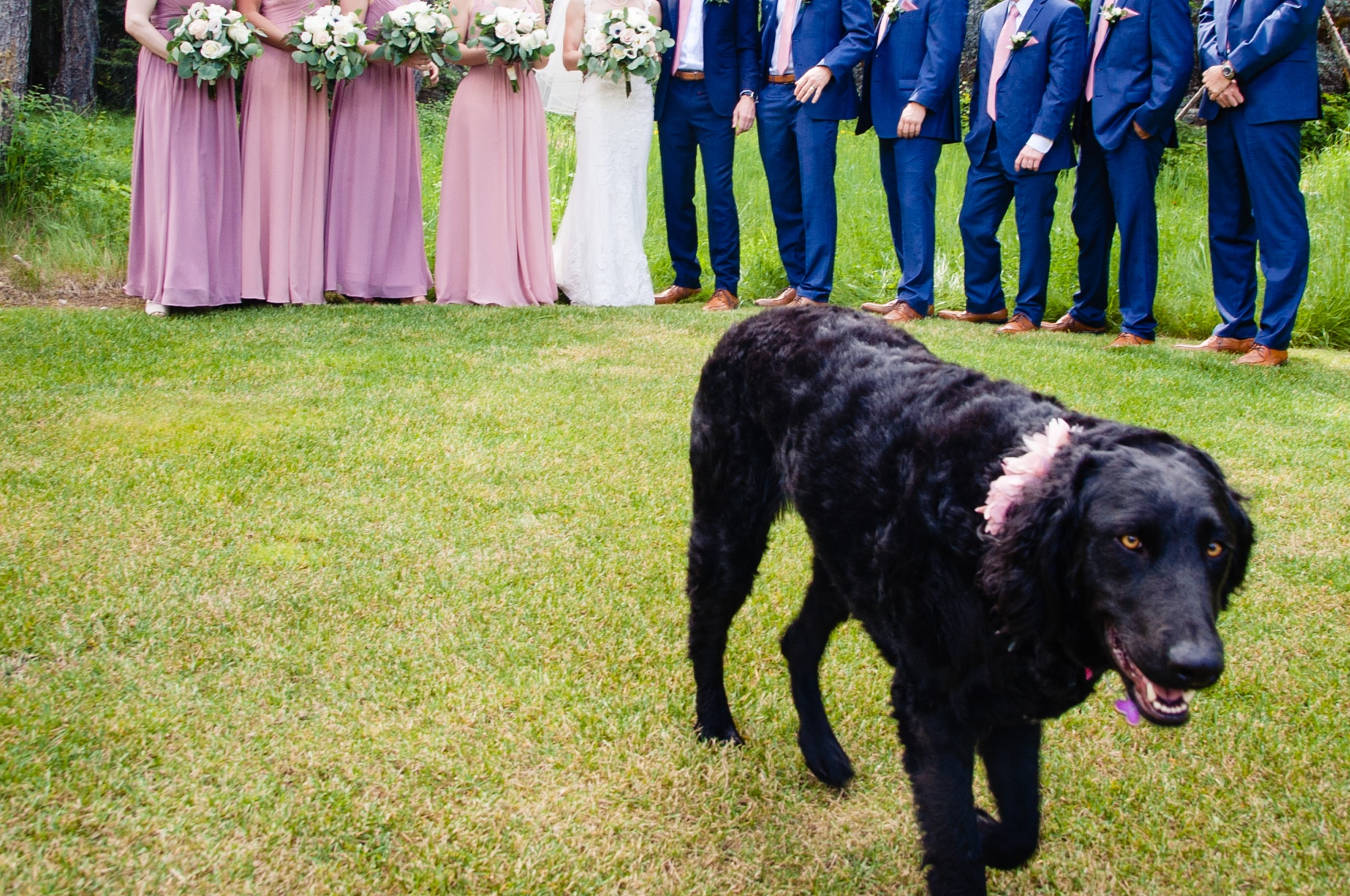 lindseyjanephoto_wedding0047.jpg