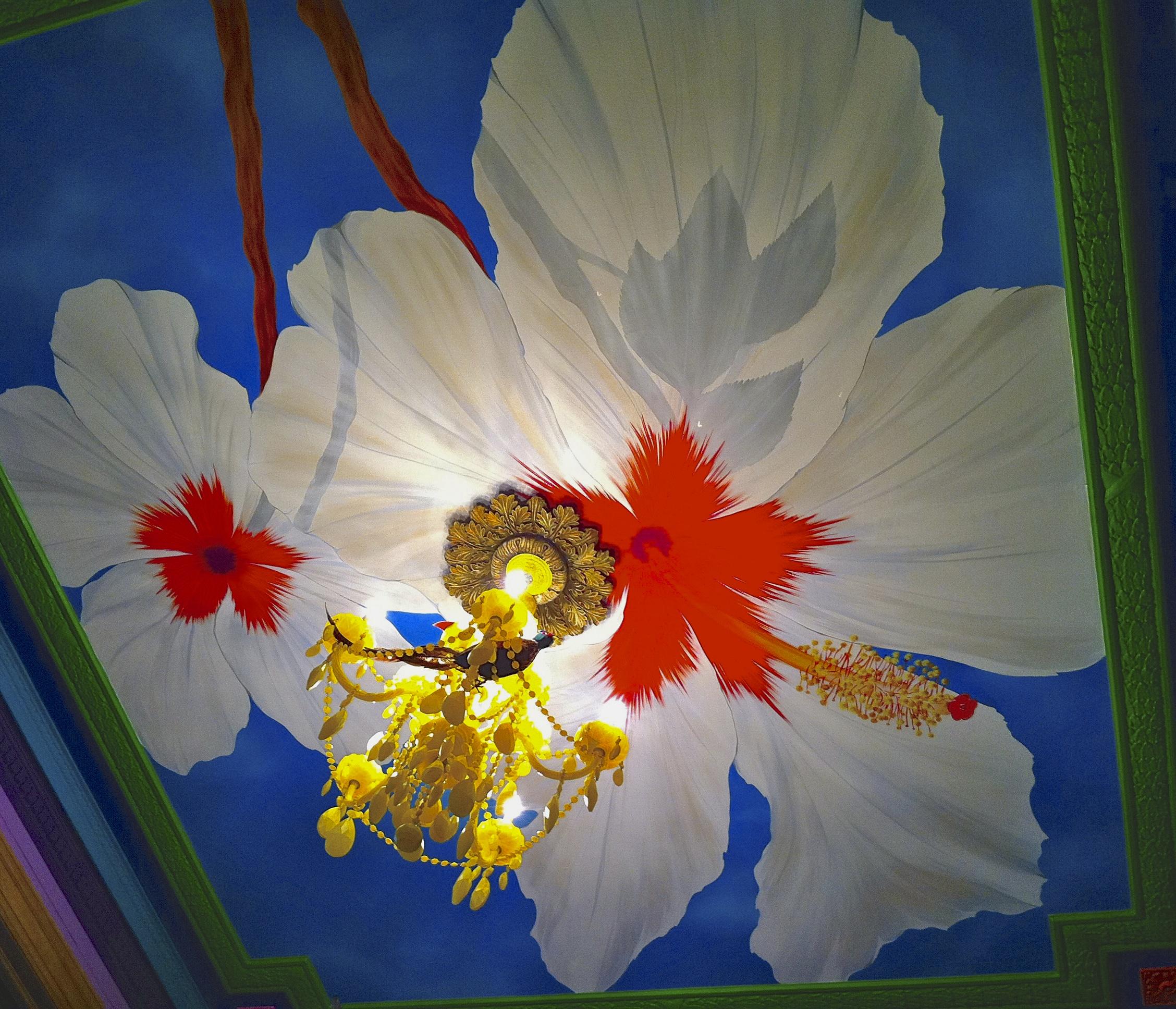 Flower Ceiling Mural