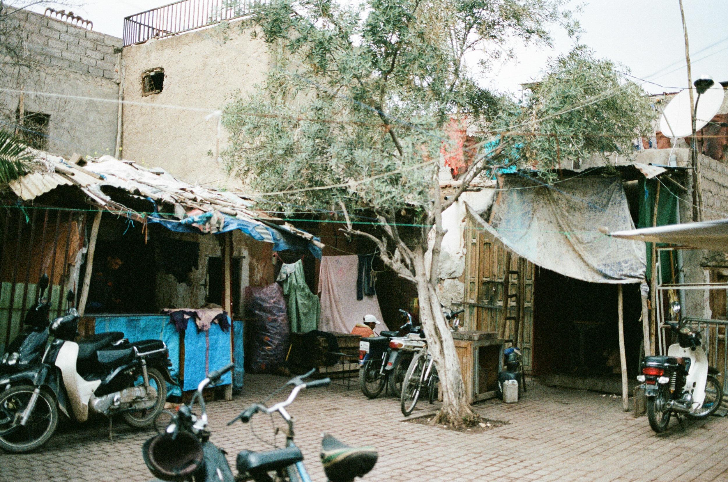 morocco_daphnetan6