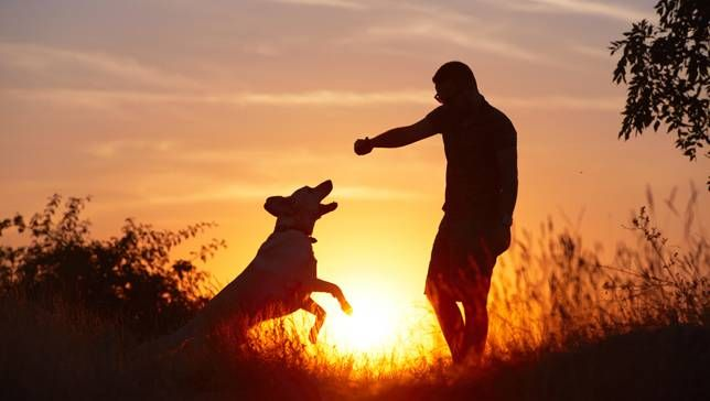 man and dog outdoors