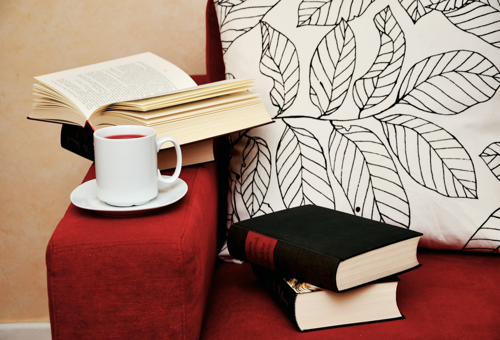 books and comfortable sofa