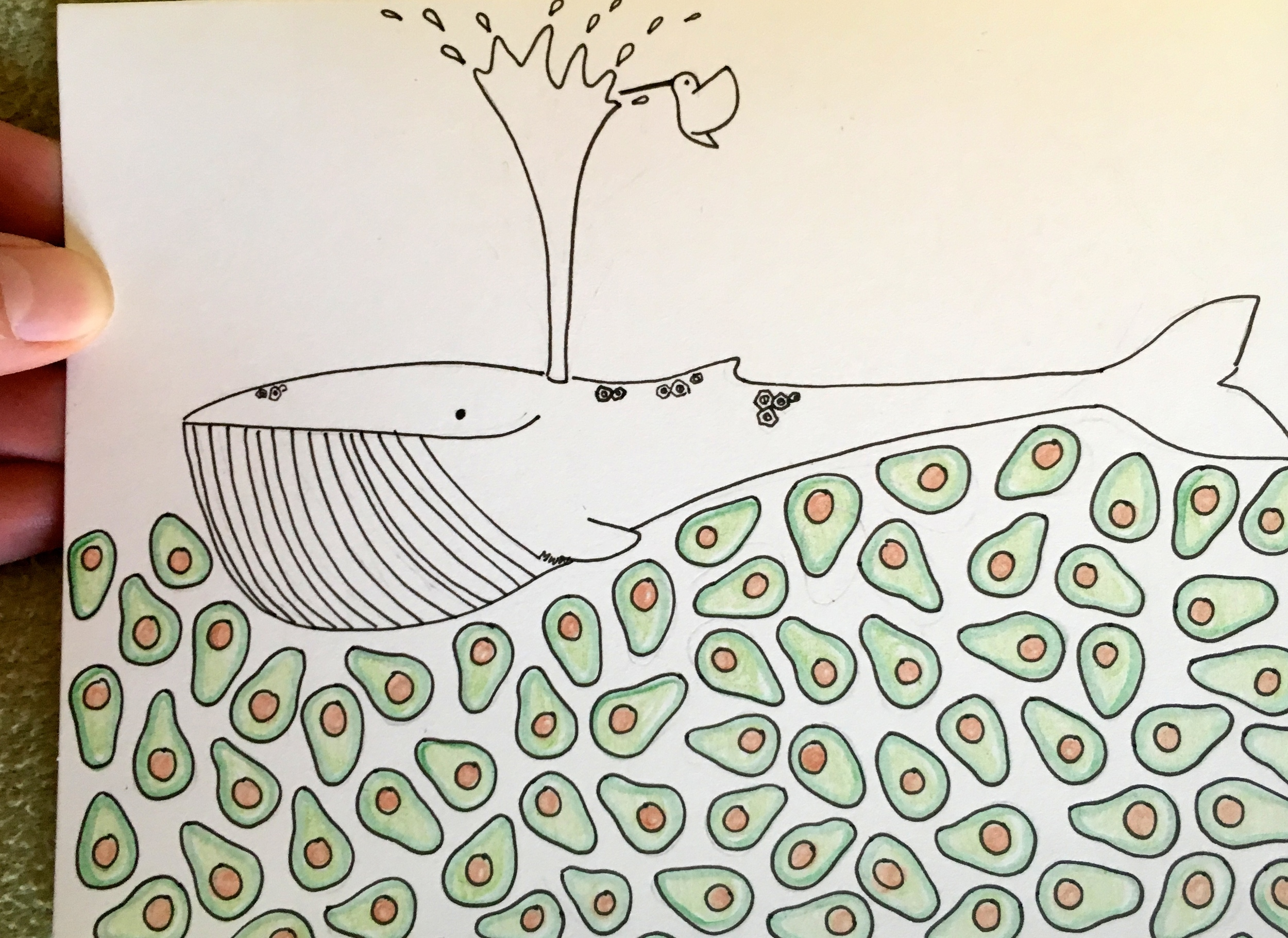 Avocado seas, for Kiya