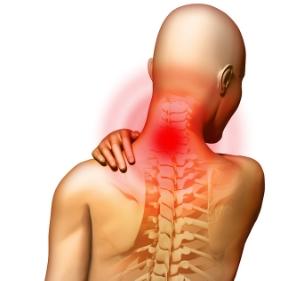 bigstock-X-Ray-Anatomy-Painful-Neck-2512323.jpg