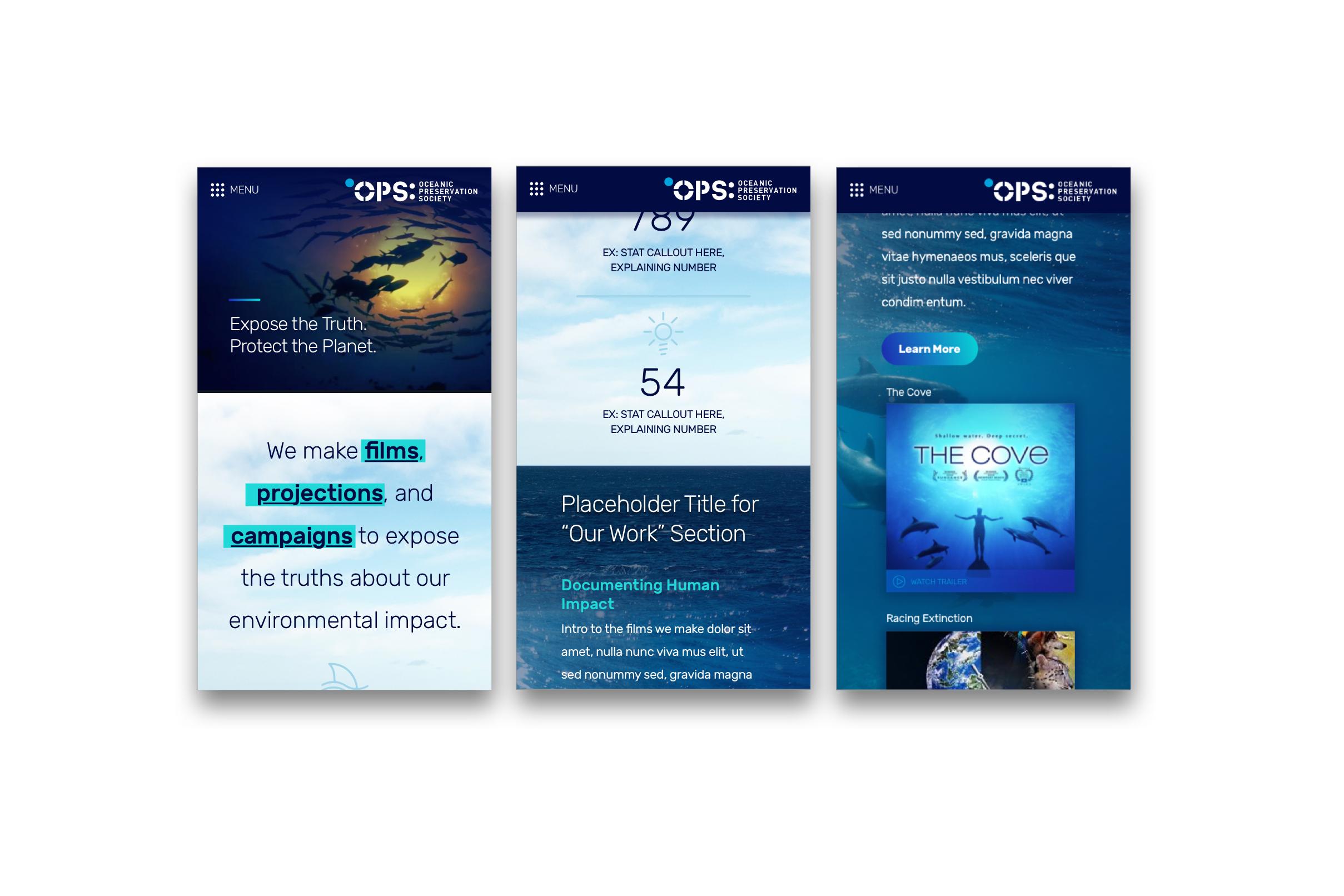 ops-slider-8 copy.jpg