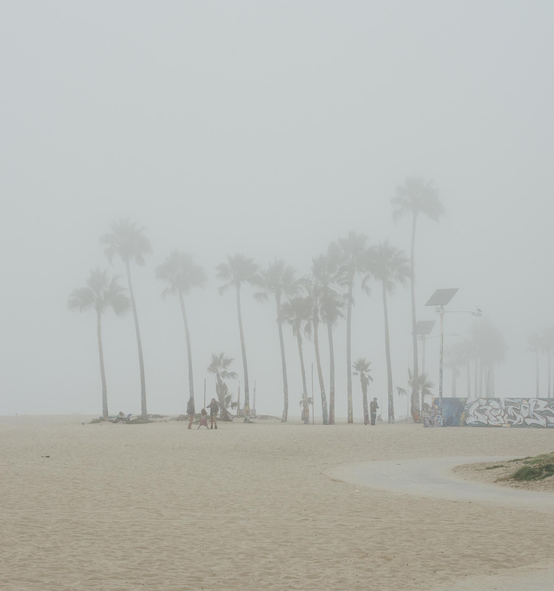 bday fog.jpg