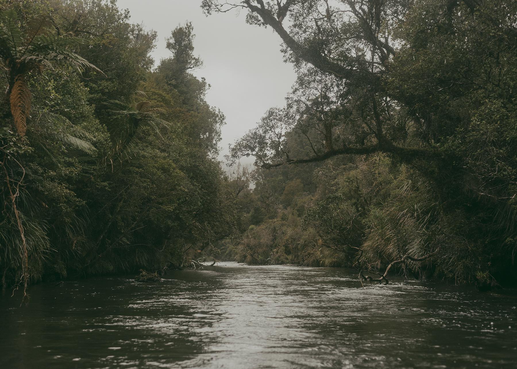 River 2 (without Chris paddling).jpg