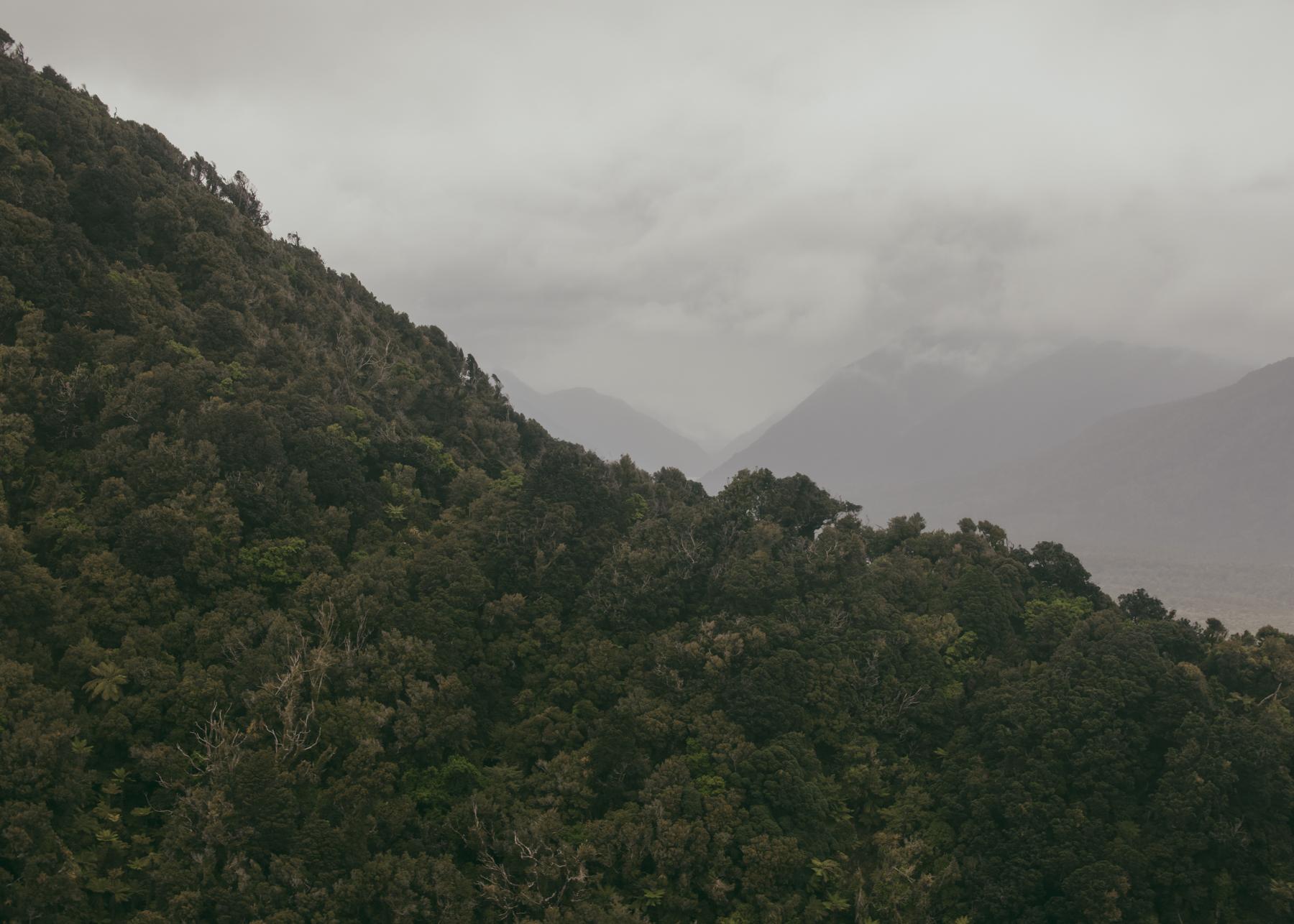 Fiordland_.jpg