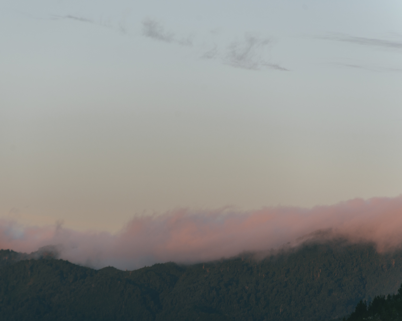 Pink clouds coro.jpg