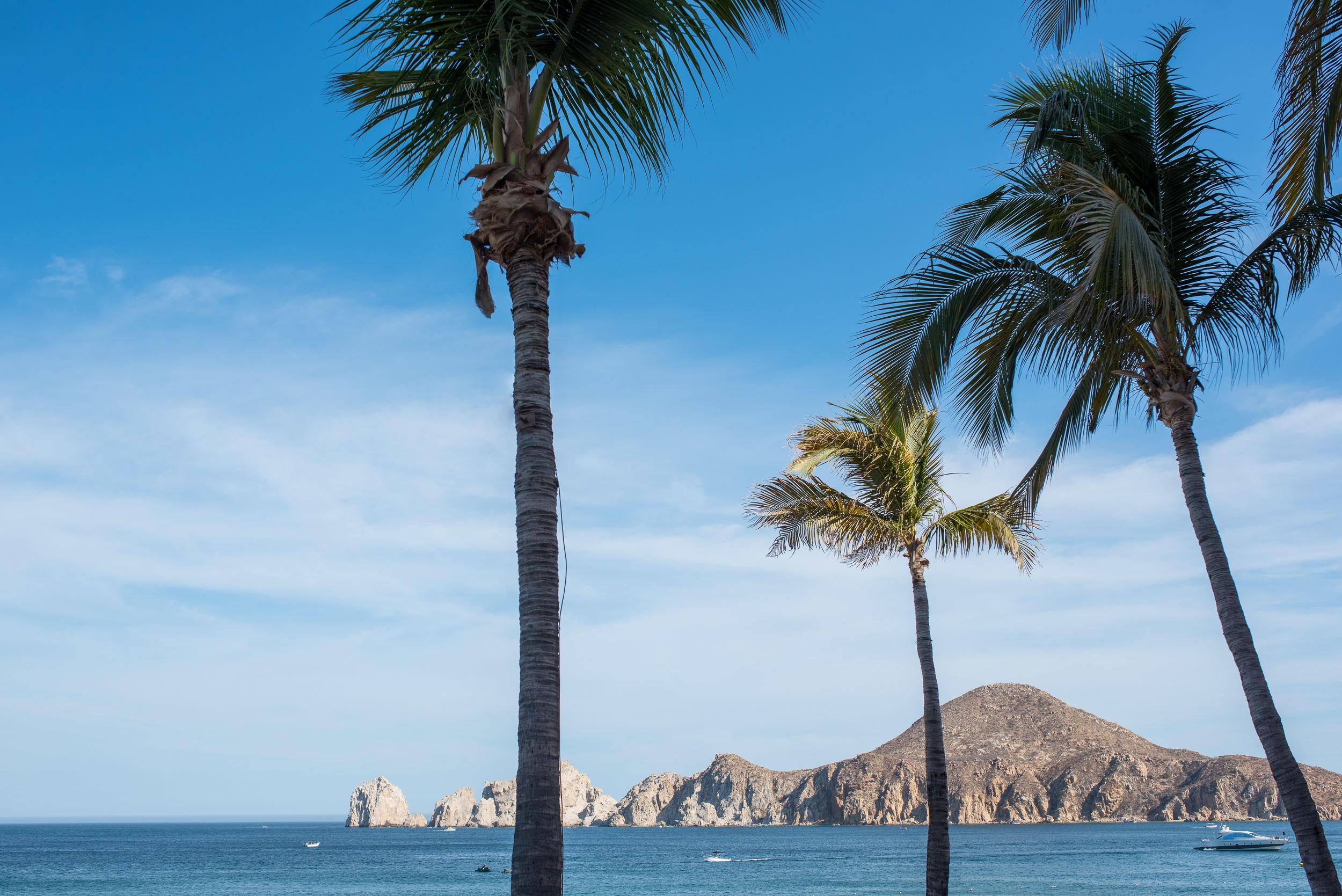 Los Cabos 2016-4.JPG