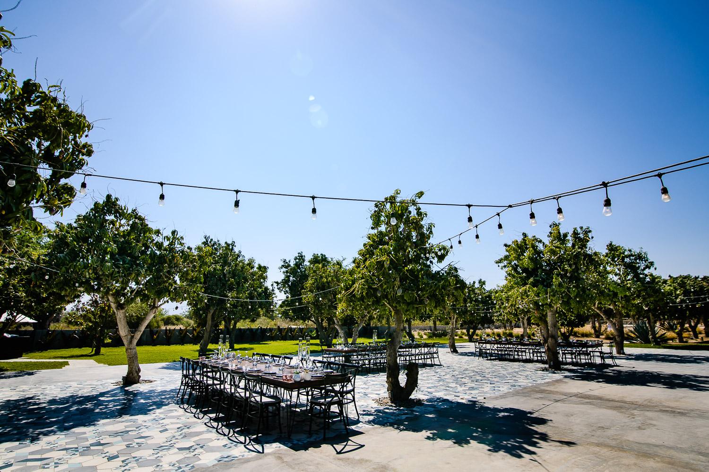 Acre-Baja-Wedding.JPG