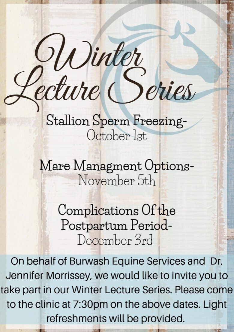 Winter Lecture Series Poster.jpg