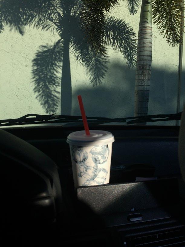 Iced Palm