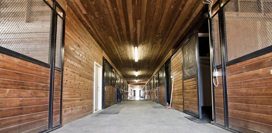 Facilities 06.jpg