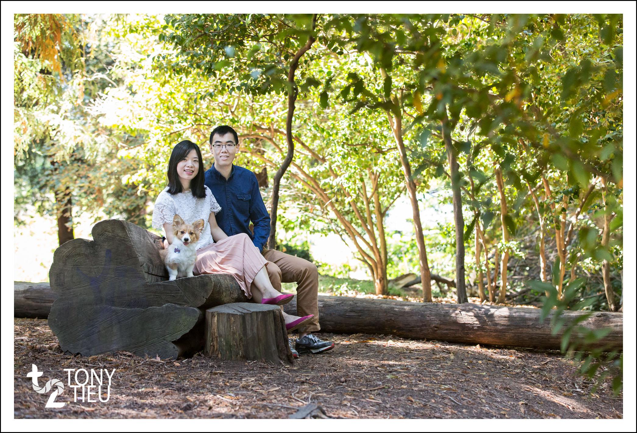 Tony_Tieu_Jiabin Liu_6.jpg
