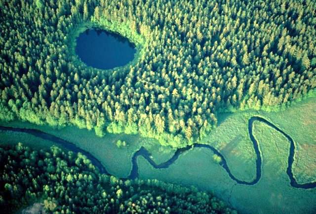 Landscape – Microhabitat Interactions