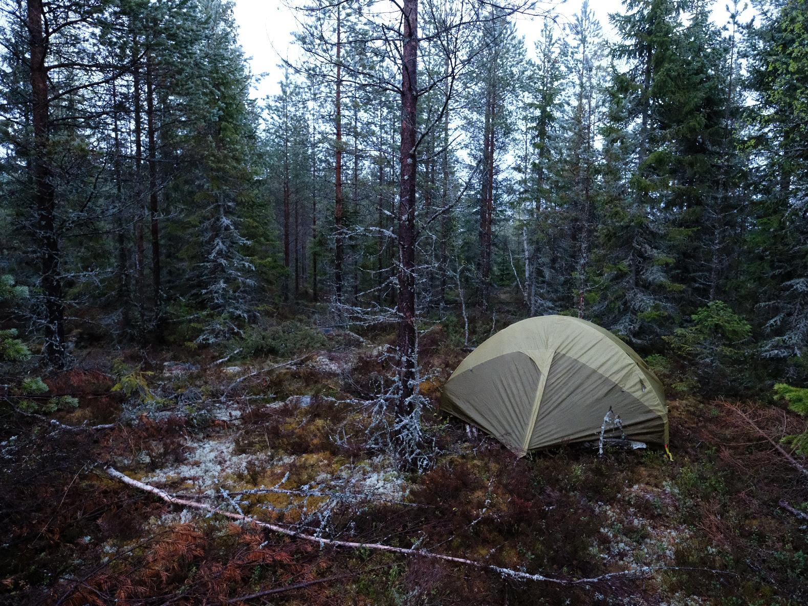 camping north of the polar circle.