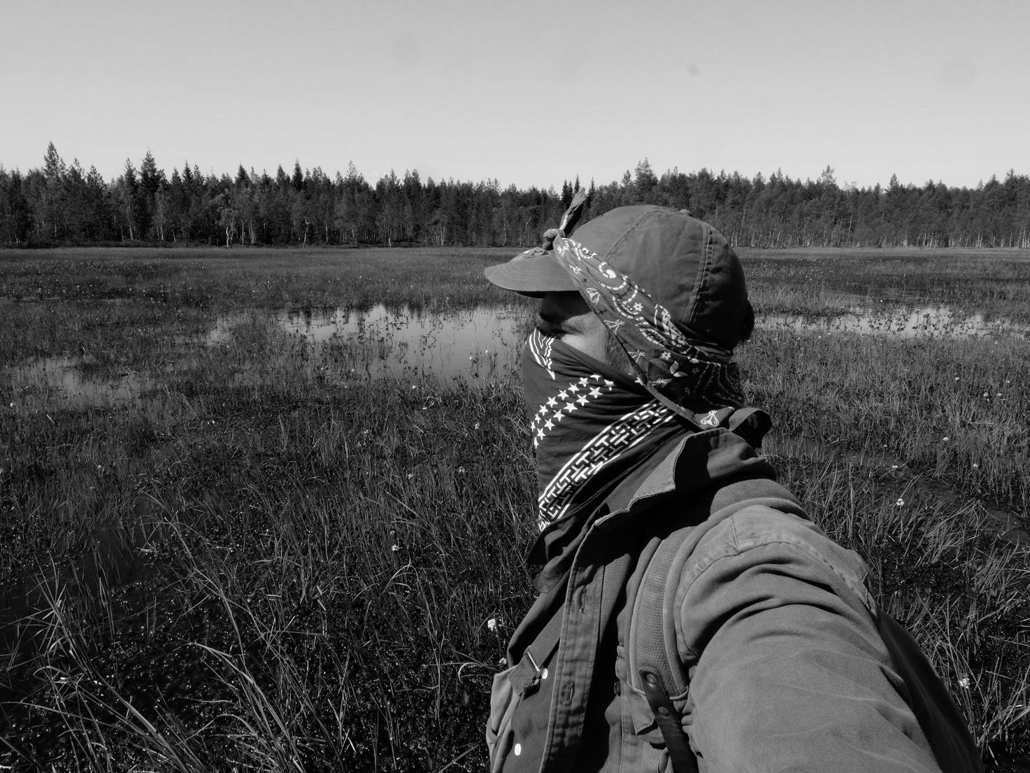Fieldwork in high latitude wetlands brings lots of mosquitos!