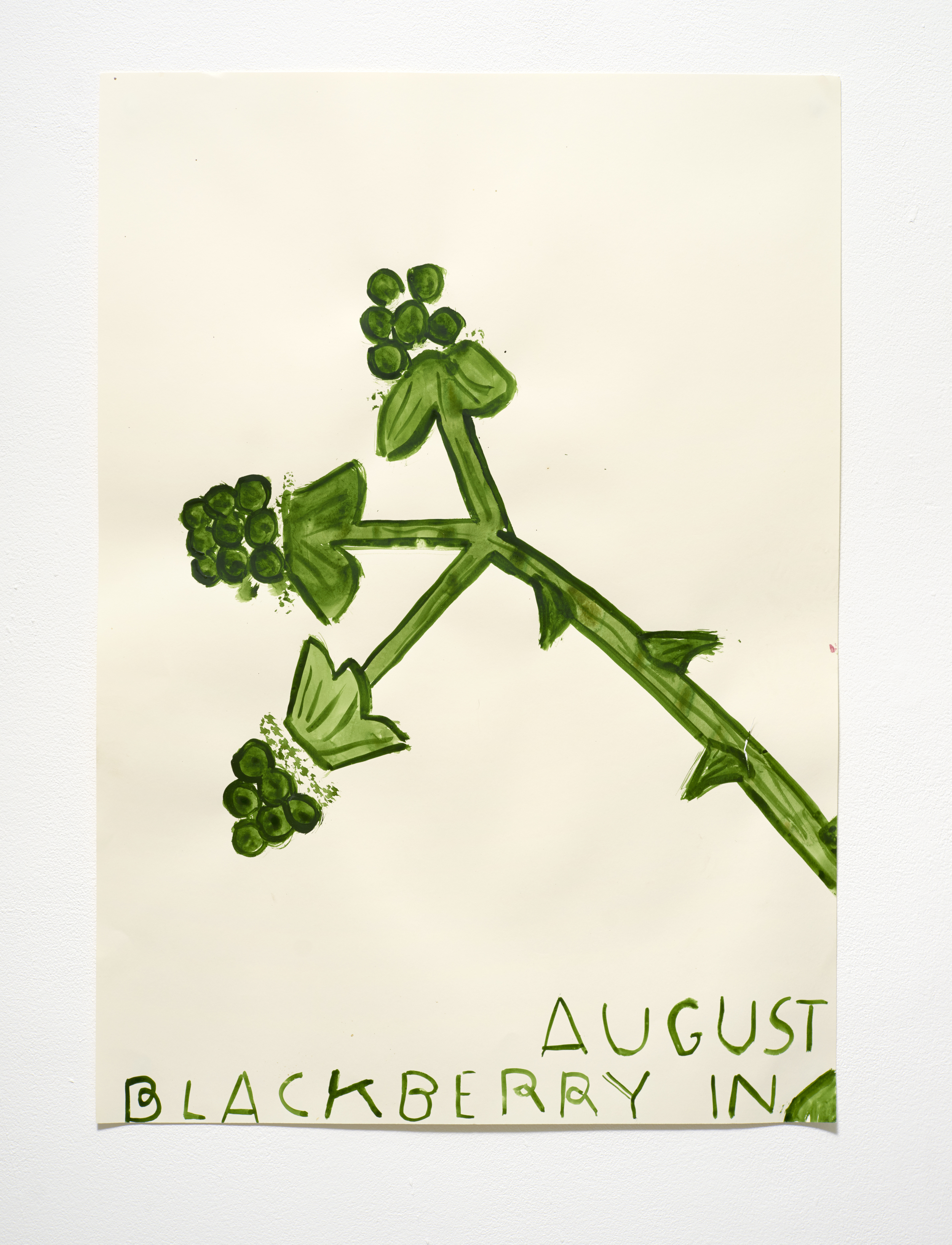 八月的黑莓 Blackberry in August (2015)