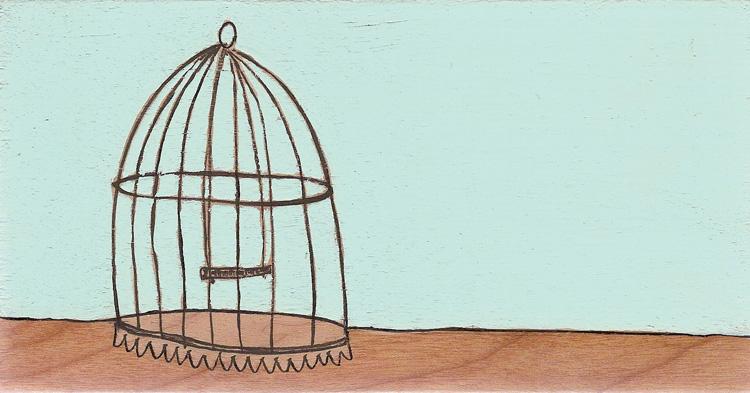 Blue_horiz_birdcage.jpg