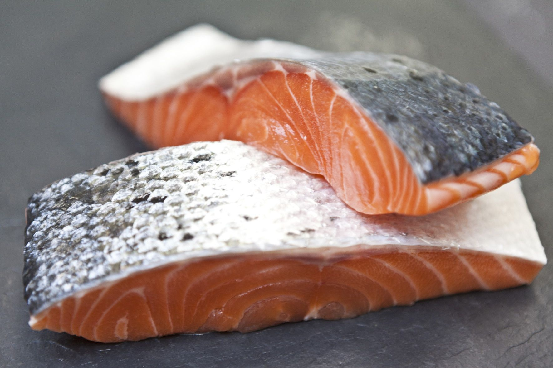 fresh-salmon-fillets-[3]-16-p.jpg