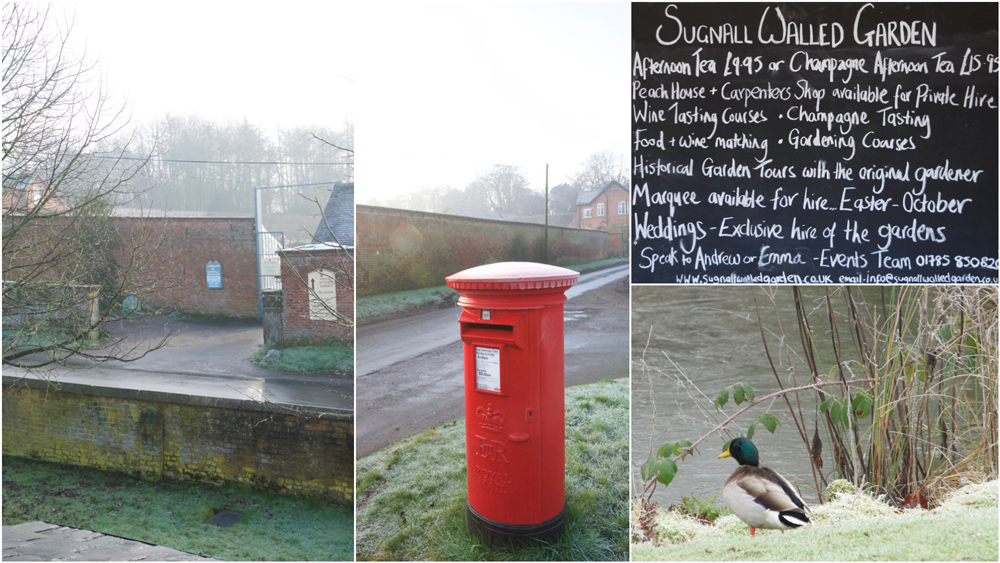 Sugnall Walled Garden Collage.jpg