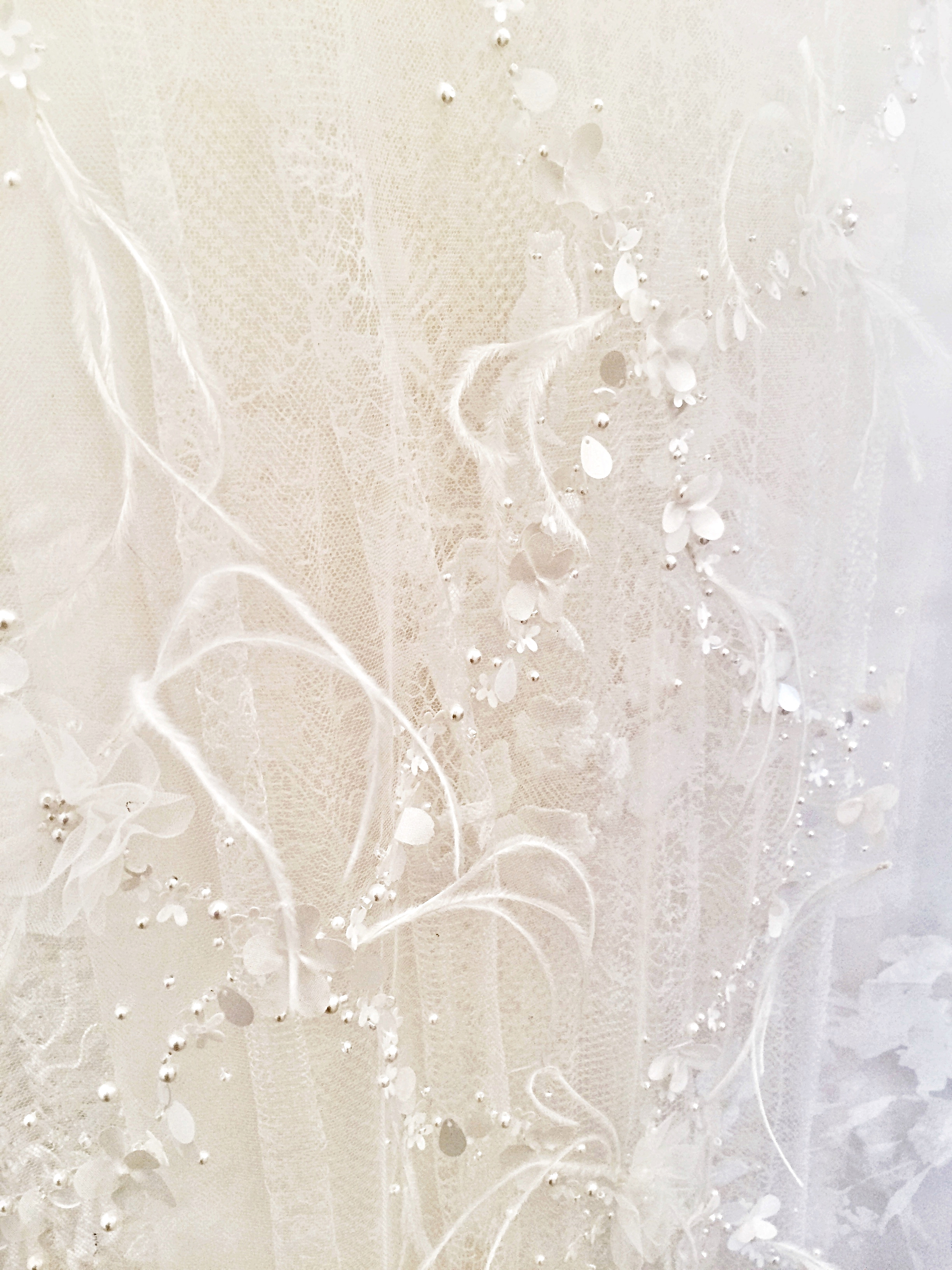 Delicate  feathers and pearls on tulle