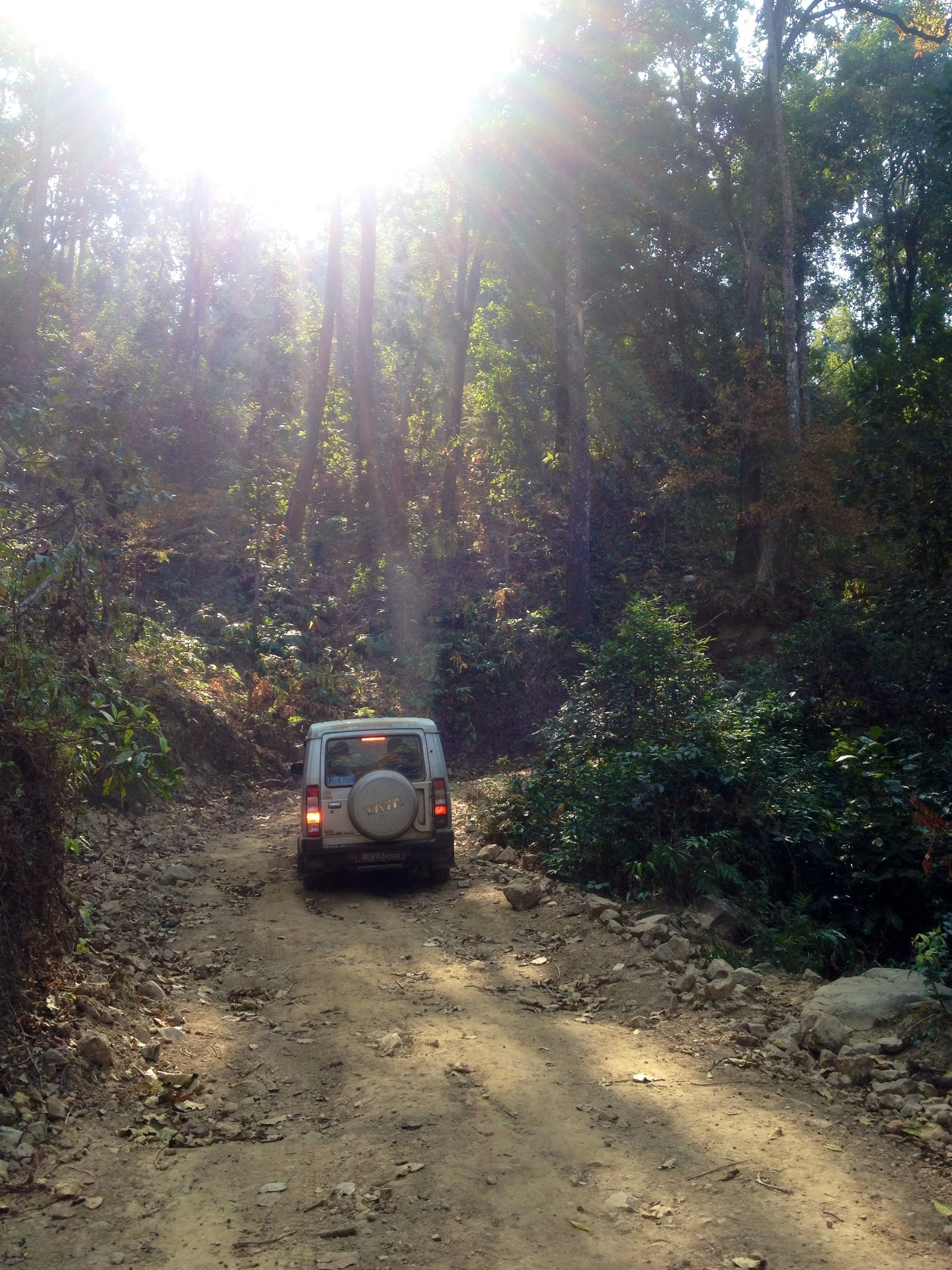 Road leading up to Chipchipe and Amlise villages in Udayapur District, Nepal