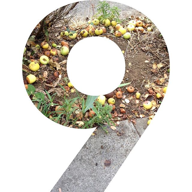 9 more days to vote for Apples to Applesauce through Advantis Credit Union's Grow community grant (link in profile). You can vote ONCE a day everyday until July 15. PLEASE VOTE the top five win a $10,000 grant which would allow us to purchase a refrigerated trailer so that we can harvest more produce and feed more children!!!! ___________________________________________________________________#advantiscreditunion #vote #applestoapplesauce #growinghealthygenerations #nonprofit #glean #harvest #bake #can #donate #endfoodwaste #endchildhunger #now