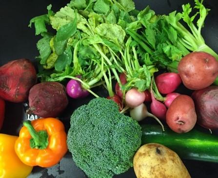 https://mailchi.mp/[xxxxxx]/ridgway-farmers-market-highlights-this-week