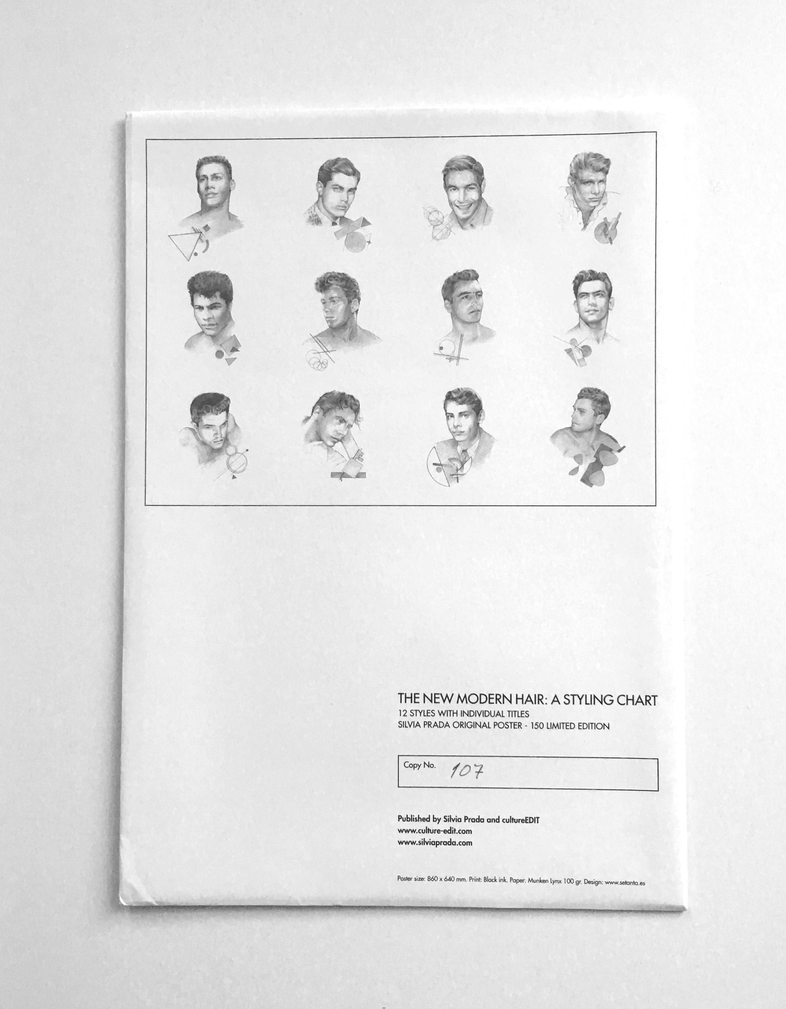 THE NEW MODERN HAIR: A STYLING CHART  BY SILVIA PRADA  LIMITED EDITION FOLD-OUT POSTER