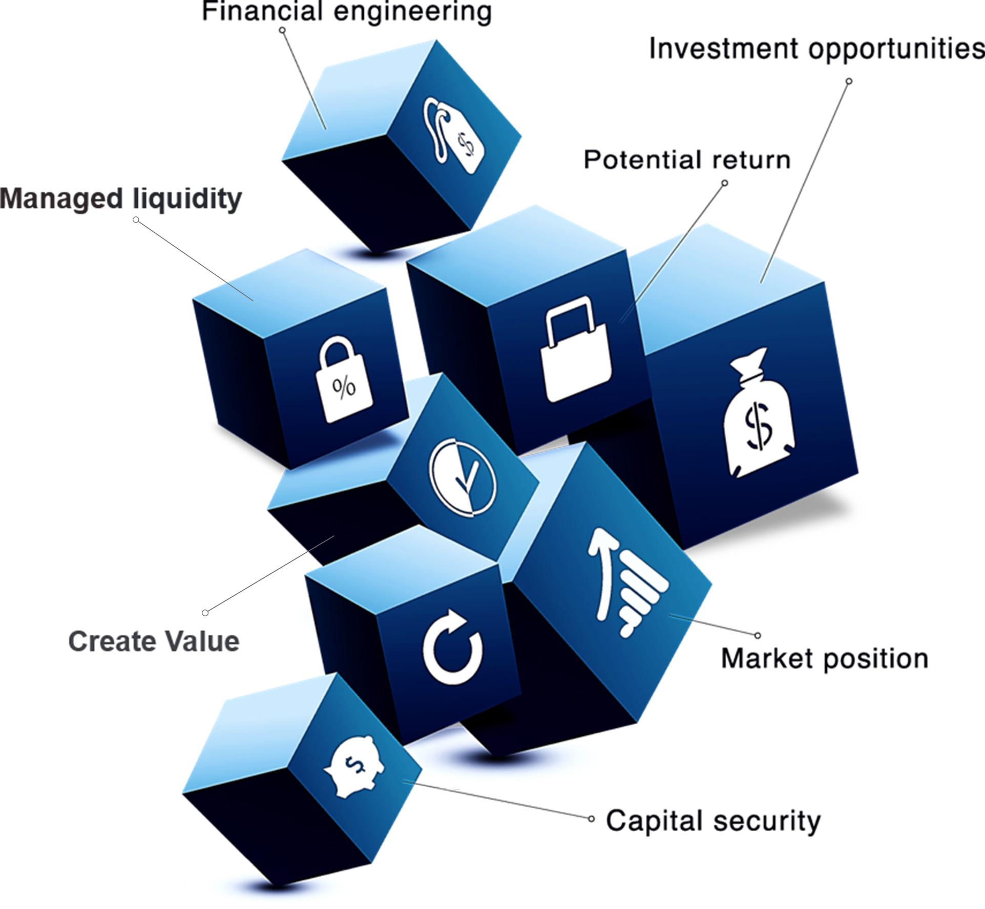 Vivaris Capital Structure