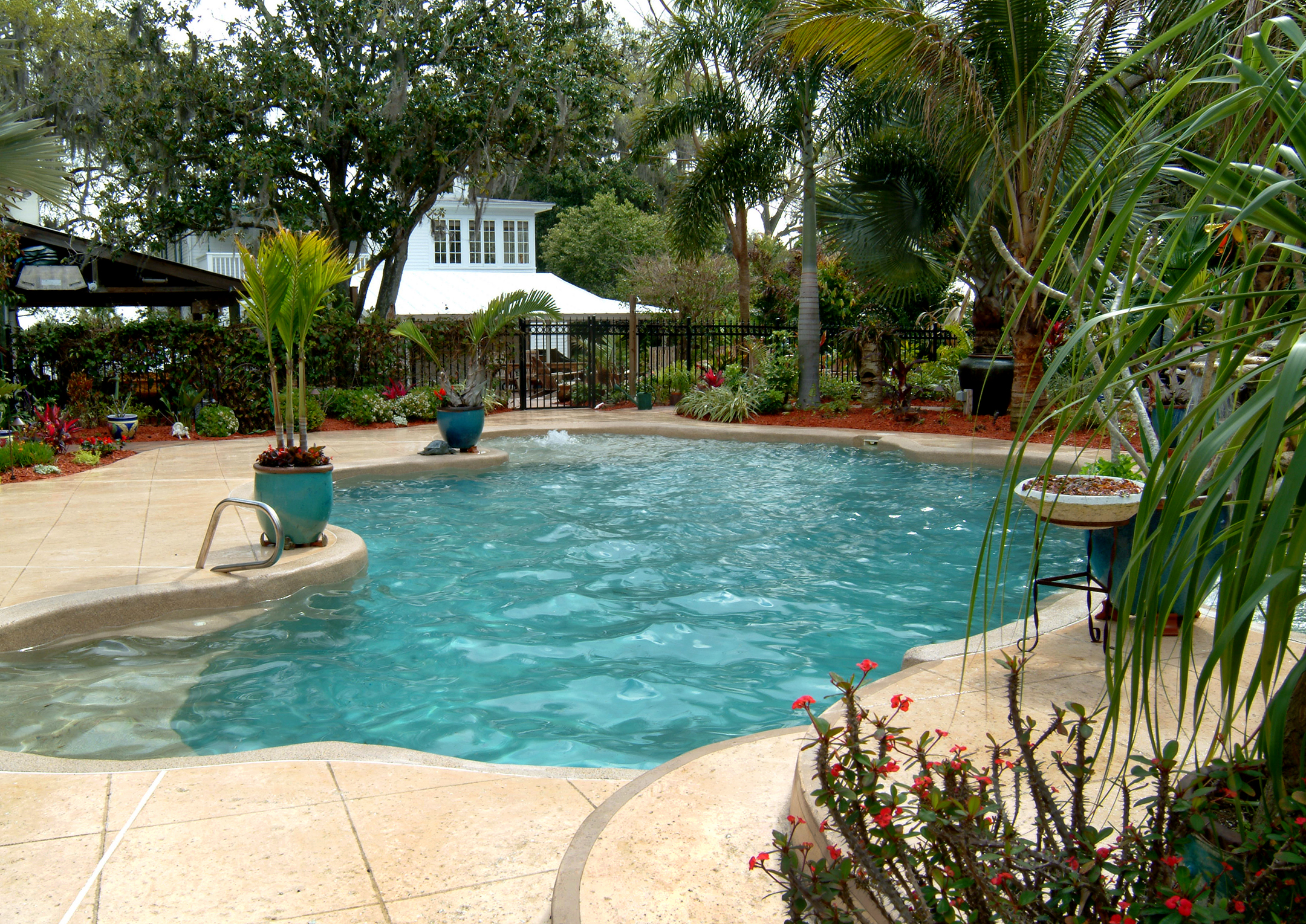 Pool and patio
