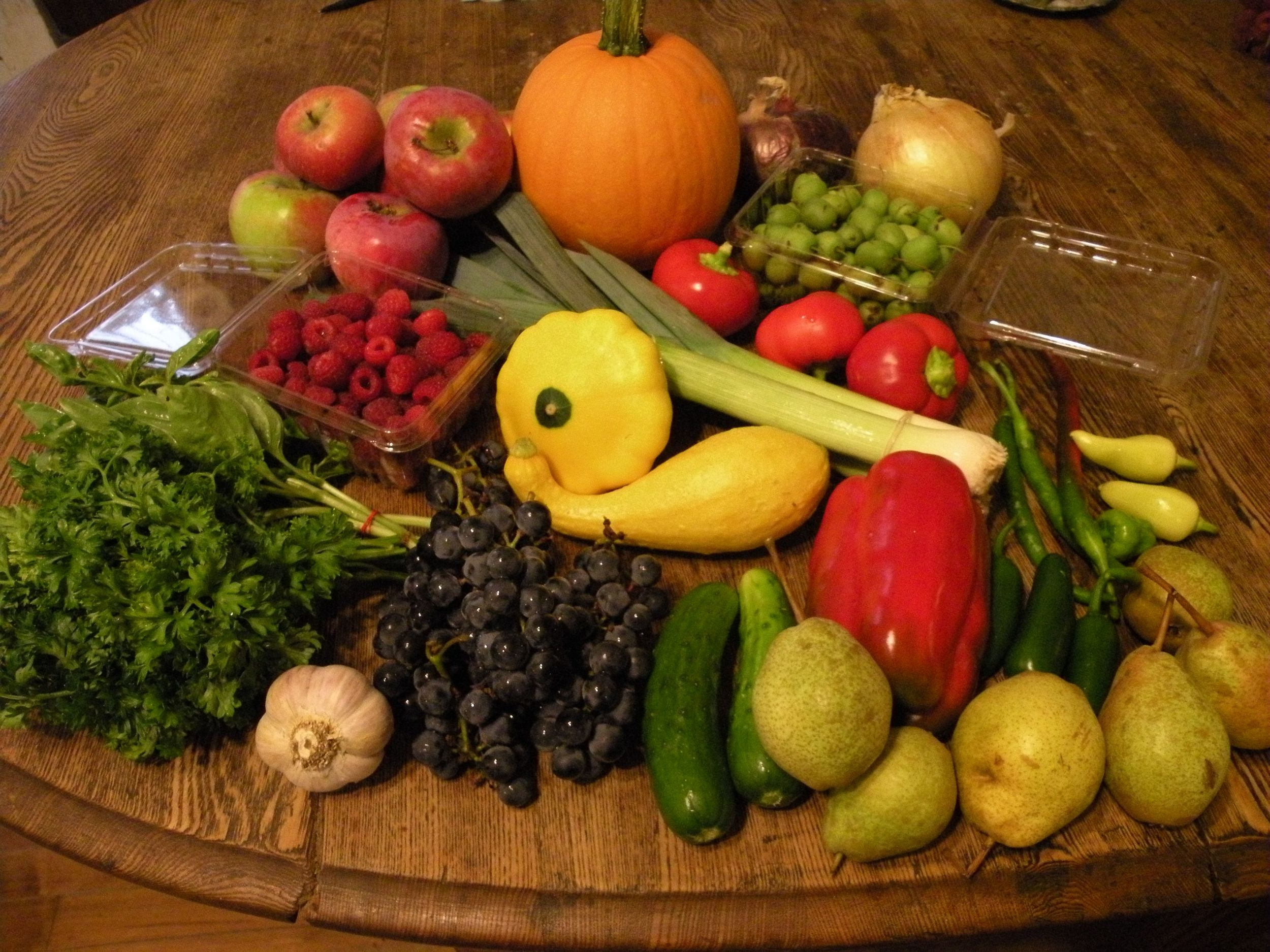 Late September CSA Share