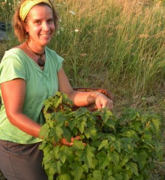 Erin Schneider, co-owner of Hilltop Community Farm