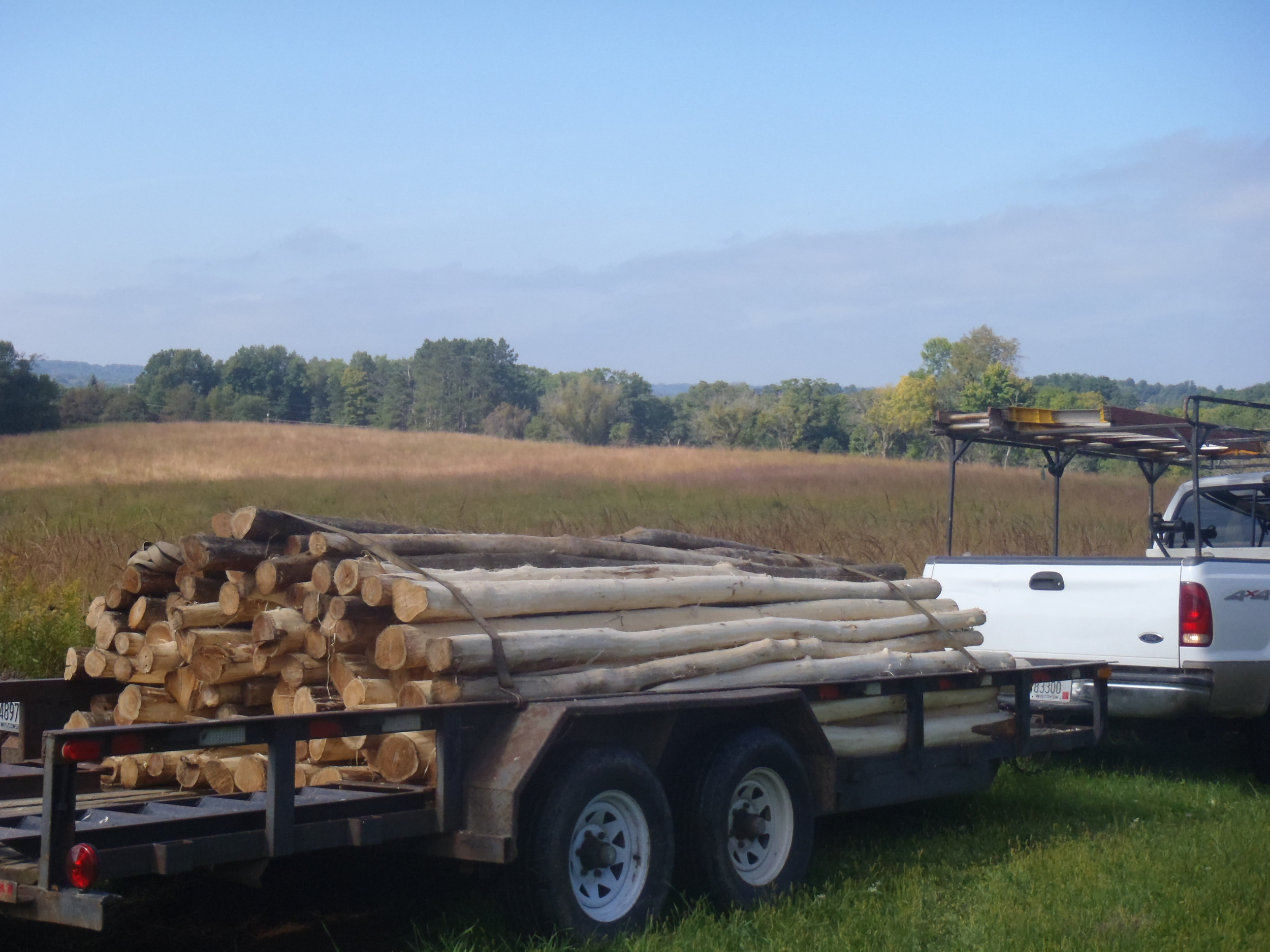 93 of our 12' Black locust fenceposts have arrived. Woven wire is set to arrive later this week, now we just need funds for supplies to weave it all together and install! Photo by Erin Schneider